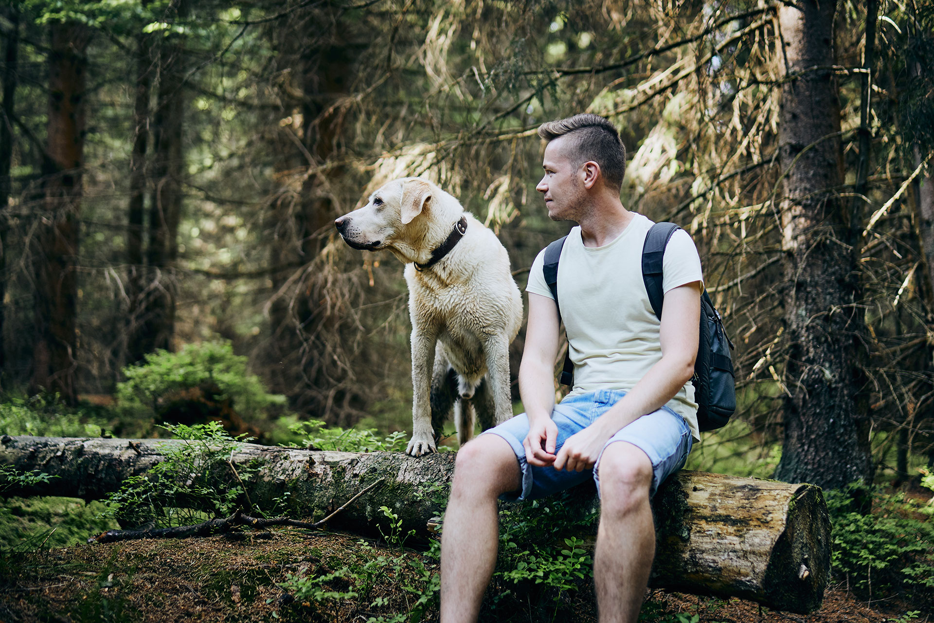tourist-with-dog-in-forest-V457J9N